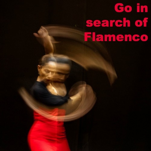 intense high speed image of female flamenco dancer in red and black against dark background