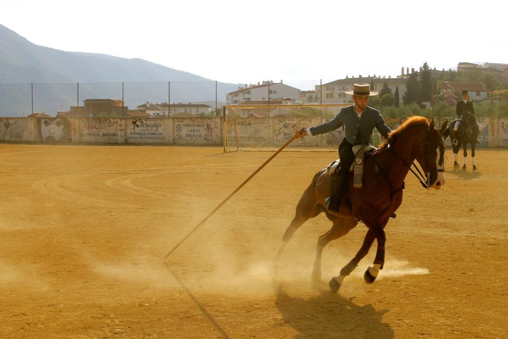 HorseFeria_1000